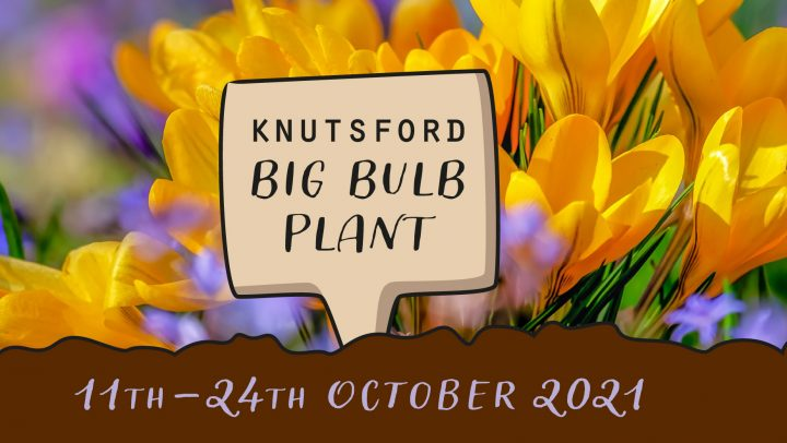 Knutsford Big Bulb Plan 11th-24th October 2021