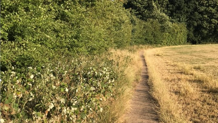 Footpath on Beggaramans Lane