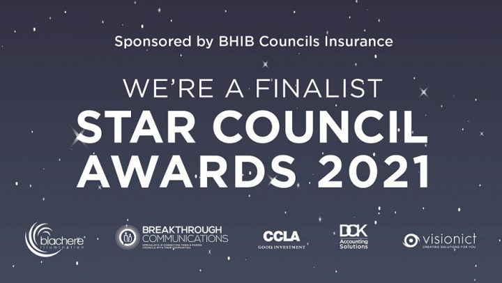 NALC Star Council Awards 2021 Finalist Graphic